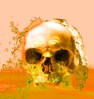 GOLDEN SKULL IN WATER