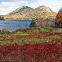Jordan Pond and the Bubbles at Fall Art Prints & Posters by George Oze