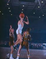 Pete Maravich floater