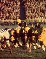 Bart Starr in Action