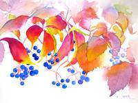 Virginia Creeper Painting for RB