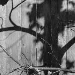 """Shadow Dance"" by LukeMoore"