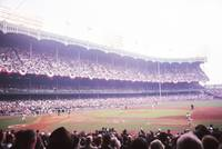 Stands View of Yankee Stadium
