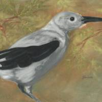 Clarks Nutcracker Art Prints & Posters by Lori Blaylock