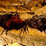 """2 Buffalo Lascaux Cave SE France Cropped"" by TheNorthernTerritory"