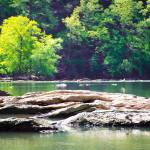"""Shoals on the Chattahoochee"" by Littlepig"
