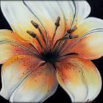 """Tiger Lily"" by LizMoran"
