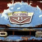"""""""Found On Road Dead"""" by JeanDavisOlecki"""