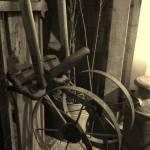 """Barn finds"" by JeanDavisOlecki"