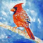 """Red Cardinal"" by Liliya_Chernaya"