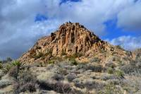 joshua tree mountain