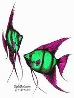 AngelFish-green-pink