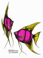 AngelFish-pink-yellow