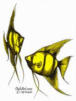 AngelFish-yellow