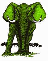 Elephant Guard-Green