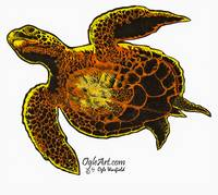SeaTurtle-natural