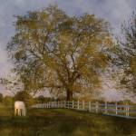 """""""Evidence for Epona"""" by Dwiggs"""