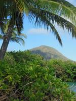 Koko Crater (extinct volcano)