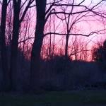 """""""Pastel Sunrise in the Finger Lakes"""" by FingerLakesPhotos"""