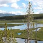 """""""Meandering in Wyoming"""" by Groecar"""