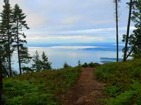 Explore And Discover Nature - San Juan Islands