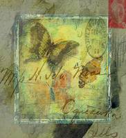 3 butterflies watercolor grunge mailA