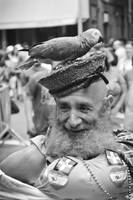 Parrot Man with Beard