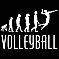Volleyball Evolution