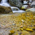 """Rocks in a pool"" by Landscapes"