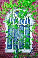 Stained Glass in Spring