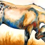 """APPALOOSA"" by MBaldwinFineArt2006"