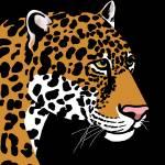 """""""Jaguar"""" by waterart"""