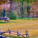"""Vermont Buck Board"" by DBenoit"