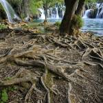 """Krka Croatia"" by marcutti"