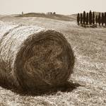 """""""Tuscany"""" by marcutti"""