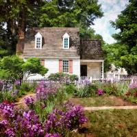 Blue Cottage Art Prints & Posters by Shari Nees