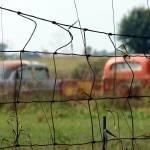 """""""carsandtrucksrustaway"""" by angelandspot"""