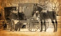 Bringing Home a New Horse in Sepia