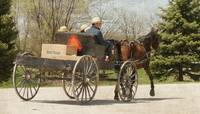 An Amish Family Heads Home