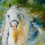 """CLOUD the White Andalusian"" by MBaldwinFineArt2006"