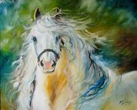 CLOUD the White Andalusian