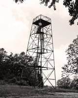 Trigg Observation Tower