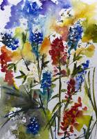 Texas Blue Bonnets and Indian Paintbrush