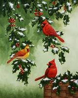 Cardinals and Holly