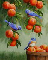 Bluebirds and Peaches