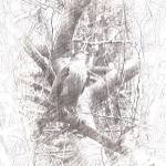 """Imagekind"" by sdreyerk1"