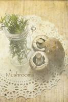 ORL-4989-1 Mushrooms