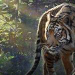 """edge of light-- bengal tiger"" by rchristophervest"