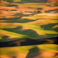 Palouse Art Prints & Posters by Frank Melchior