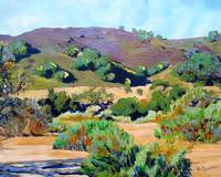 Foothills, Ramona California
